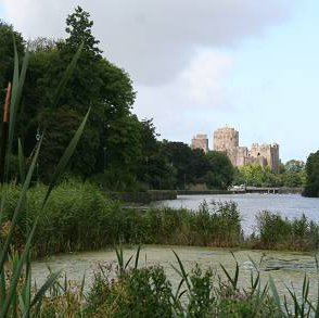 Castle over the Mill Pond